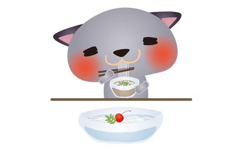 ねこがそうめんを食べているイラスト